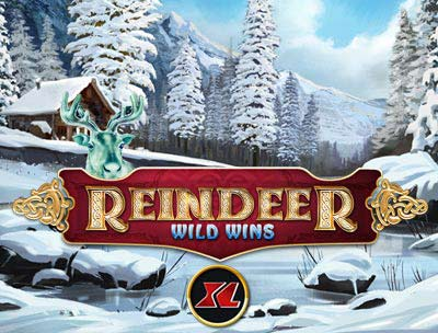 Reinder Wild Wins XL